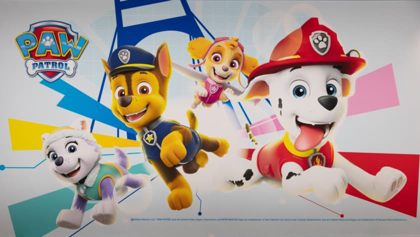 Paw Patrol Toys: Best Creative and Inexpensive Ideas 2021